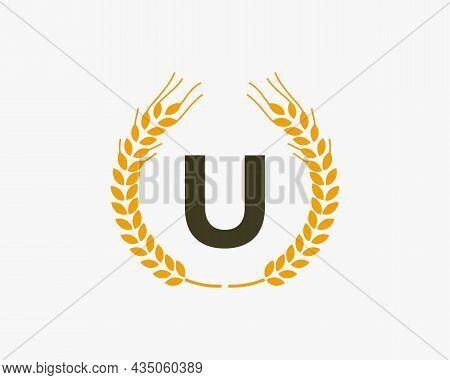 Agriculture Wheat Logo On U Letter. Letter U Agriculture Logo Design Template, Food, Healthy Nutriti