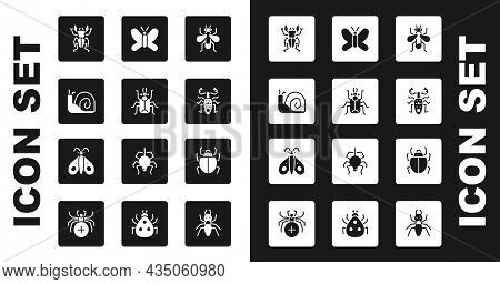 Set Insect Fly, Beetle Bug, Snail, Deer, Butterfly, Mite And Icon. Vector