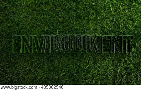 3d Green Grass And Environment Single Word