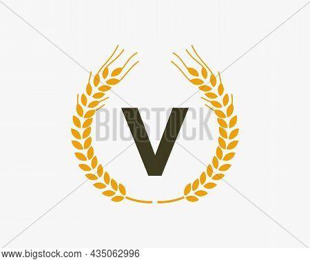 Agriculture Wheat Logo On V Letter. Letter V Agriculture Logo Design Template, Food, Healthy Nutriti