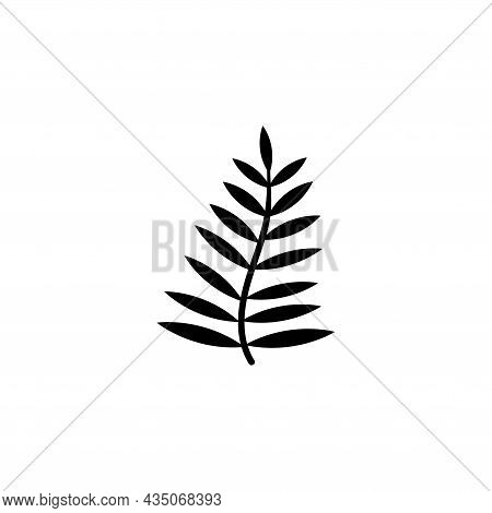 Leaf From Palm Tree, Fern Leaves, Bracken. Flat Vector Icon Illustration. Simple Black Symbol On Whi