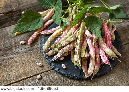 Beans Of Bean, Brown Bean (of Dried Beans) Bunch Harvest On A Rustic Table. Food Background. Copy Sp