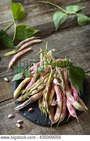 Beans Of Bean, Brown Bean (of Dried Beans) Bunch Harvest On A Rustic Table. Food Background.
