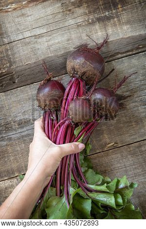 Female Hands Hold Ripe Juicy Beetroot Over A Wooden Kitchen Table. The Concept Of Organic Nutrition