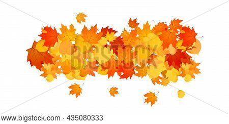 Pile Of Fallen Leaves. Decorative Line Of Orange, Yellow And Red Autumn Leaves