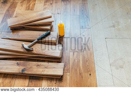 The Process Of House Renovation With Changing Of The Floor From Carpets To Solid Oak Wood. Beautiful