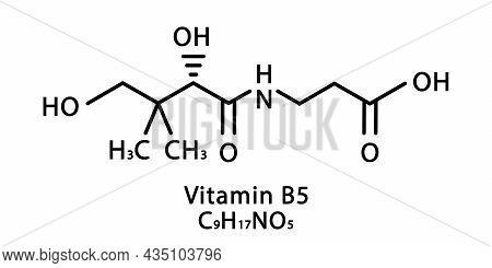 Vitamin B5 Pantothenic Molecular Structure. Vitamin B5 Pantothenic Skeletal Chemical Formula. Chemic