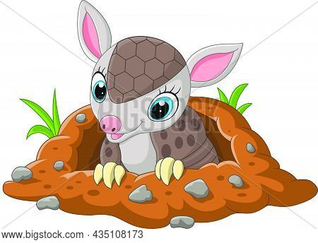 Vector Illustration Of Cartoon Cute Baby Armadillo Out Of A Hole