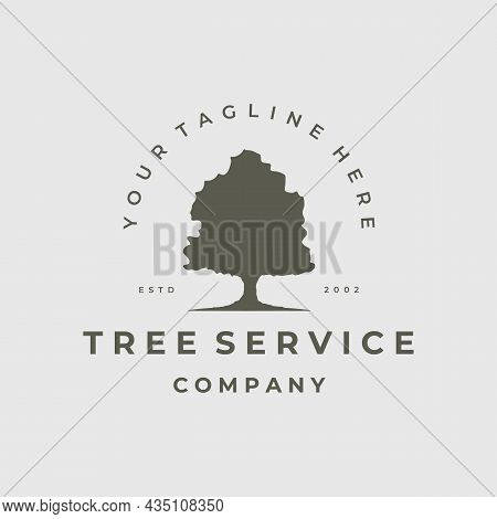 Oak Tree Logo Vintage Vector Illustration Template Icon Design. Nature Of Environment Wood And Leaf