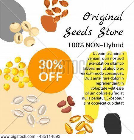 Original Seeds Store, Non Hybrid Production Vector