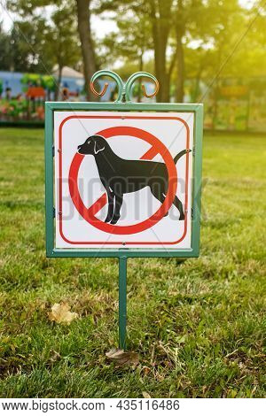 Close-up Of No Dog Sign. Street Pointer On A Background Of Green Grass. Ban On Defecation And Runnin