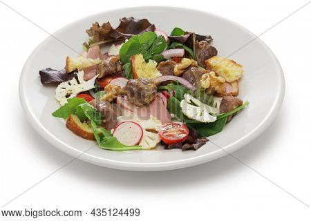 Perigord salad (duck gizzard confit, smoked duck breast, and walnuts), French cuisine