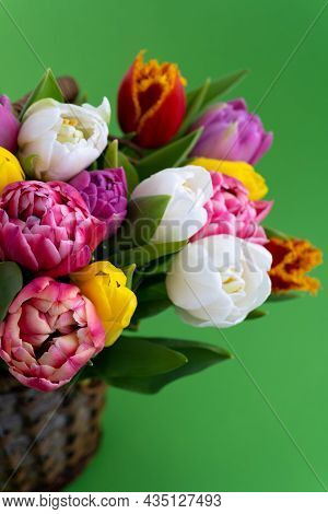 Mix Of Spring Tulips Flowers. Background With Flowers Tulips Close-up Different Colors. Multi-colore