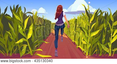 Woman Run In Corn Field Rear View, Sport Workout, Girl Running By Dirt Road With Green Plant Stems A