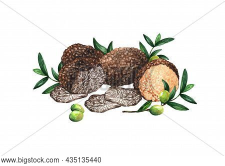 Truffles And Olives On White Isolated Background. Watercolor Illustration Isolated On White Backgrou
