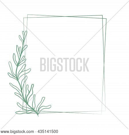 Beautiful Double Rectangular Frame With A Graceful Elongated Branch With Sheets, Vector Illustration