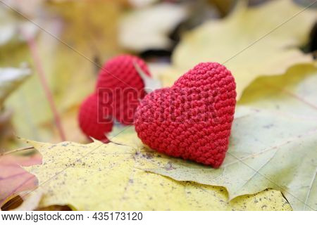 Red Knitted Hearts On Yellow Maple Leaves In Autumn Park. Concept Of Romantic Love, Fall Season