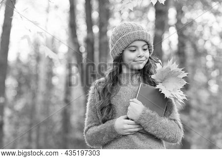 Learning About Nature In Fall Is Great Fun. Little Child Hold Book With Autumn Leaves. Fall Leaf Col
