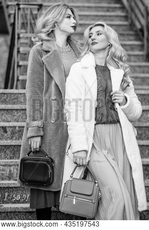 Great Shot. Stylish Business Ladies Leather Bag. Glamour Models Look Luxuriously. Sexy Blong Women.
