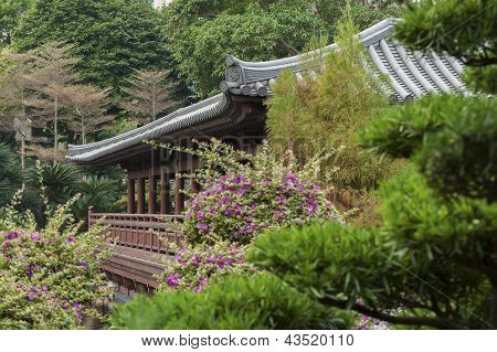 Garden in Chi Lin Nunnery