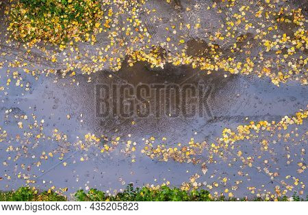 A Large Puddle With Circles From Rain Stones And Yellow Leaves, Top View.