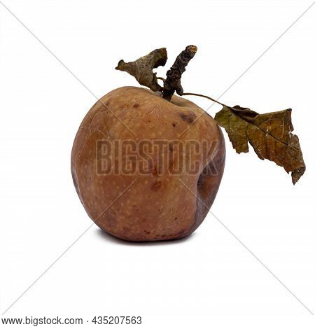 Rotting Apples, Decay And Food Waste Concept With Photograph Of Unhealthy Decayed Bad Apple Isolated
