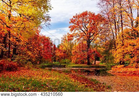 Autumn Foliage In Catherine Park, Tsarskoe Selo (pushkin), St. Petersburg, Russia