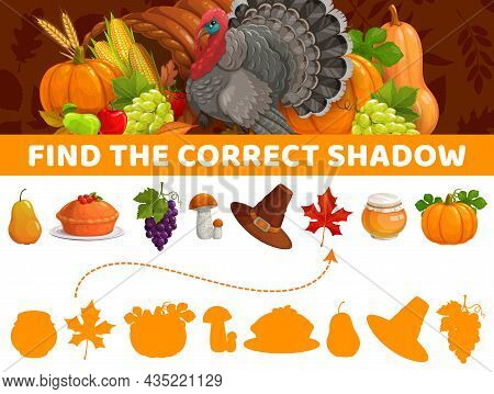 Find Correct Shadow, Thanksgiving Autumn Items, Vector Kids Game Or Tabletop Riddle. Find And Match