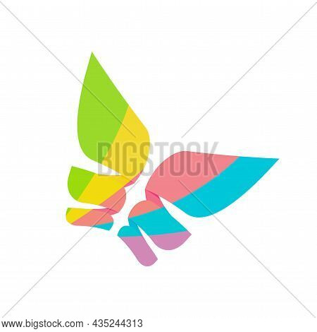 Abstract Butterfly Logo Geometric Vivid Colorful Flower Style Isolated Vector Logotype Template Desi