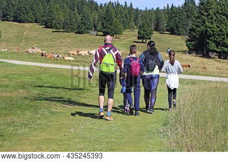 Family With Children Hiking Outdoors In Summer Nature