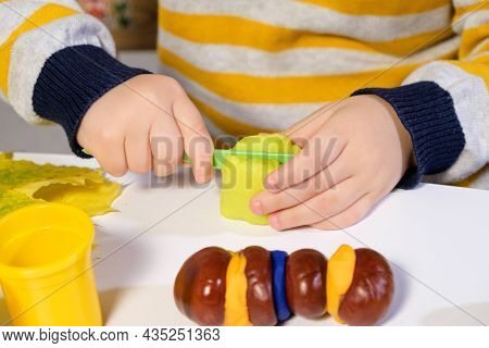 The Child Cuts The Dough For Sculpting And Creates An Autumn Craft Caterpillar From Chestnuts.