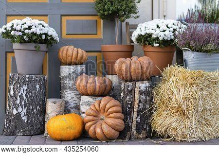 Autumn Street Design Decor Of Pumpkin. Thanksgiving, Halloween. Holiday Decoration Background With S