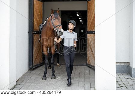 Female Horseman Going With Her Brown Thoroughbred Horse Near Stable. Concept Of Animal Care. Rural R