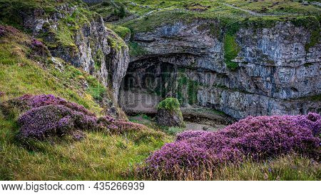 Heather On The Cliffs Above Smoo Cave