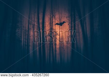 Enchanted forest in magic, mysterious fog at night. Halloween background