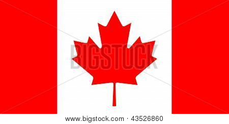 The basic design of the current Canadian national flag. Complies to the National Flag of Canada Manufacturing Standards Act (1984). Proper ratio (2:1) and red color (RGB 225,0,0). Adopted February 15 1965. poster