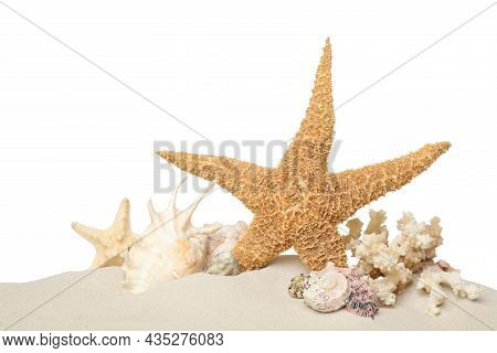Beautiful Starfishes, Coral And Sea Shells In Sand On White Background