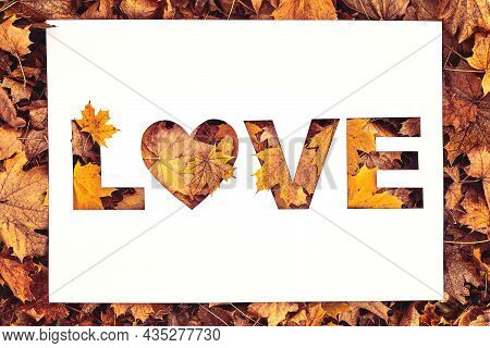 Love Text Cut Out On White Paper Card Lying On Background Of Autumn Fall Leaves