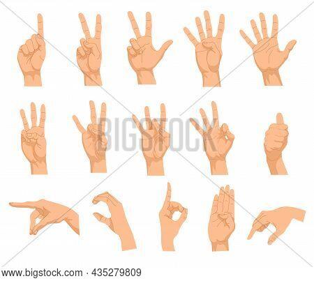 Set Of Different Hand Gestures. Vector Illustrations Of Human Palm Showing Numbers, Gesturing Signs.