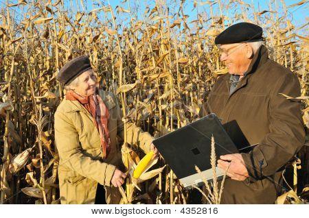 Happy Farmers In Field
