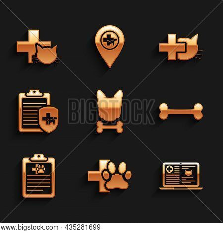 Set Dog And Bone, Veterinary Clinic, Clinical Record Cat Laptop, , Pet And Icon. Vector