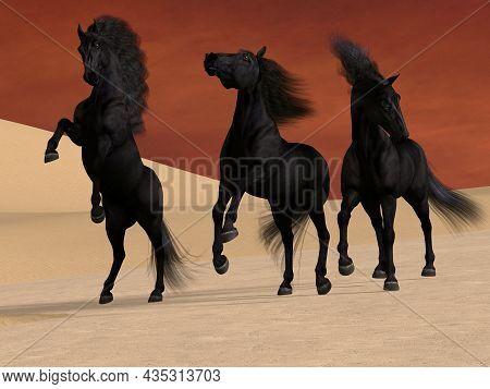 Three Black Horses 3d Illustration - Three Friesian Black Stallions Stay Together In A Desert Landsc