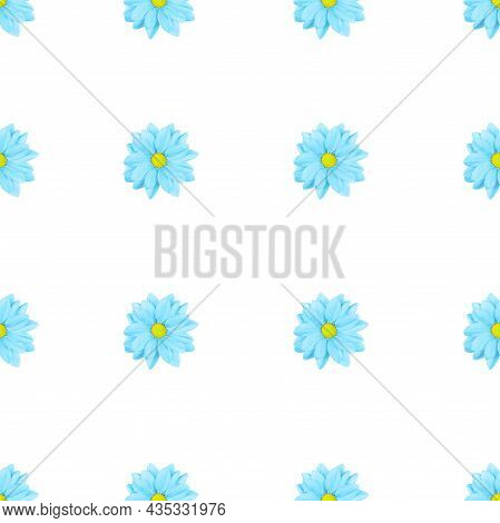 Pastel Blue Flower Floral Seamless Pattern Isolated On White Background. Chamomile Or Chrysanthemum