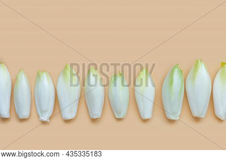 Many Raw Endives Salad Roots Or Chicory On Light Orange Background, Healthy Organic Meal Concept
