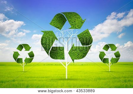 Tree As A Recycle Symbol