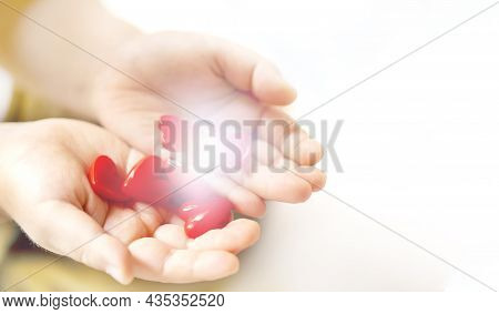 Little Child Holding Red Hearts, Close Up Isolated And Light On White Background. Health Care, Love