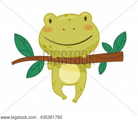 Cute Frog Hanging On Tree Branch. Green Funny Amphibian Toad Character Cartoon Vector Illustration