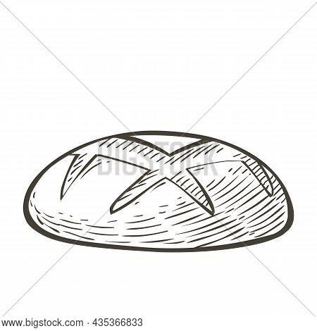 Vector Loaf Of Bread. Rye Rounde Bread Whole Grain Bread. Baked Bread. Sketch Realistic Line Vintage