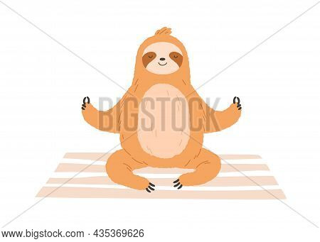Cute Sloth Meditate, Sitting In Yoga Posture. Funny Animal Relaxing During Meditation Practice. Happ