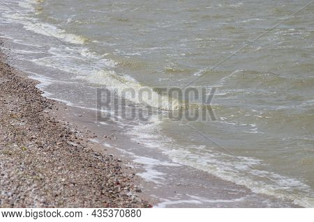 The Landscape Of The Coastline Of The Kaliningrad Bay.